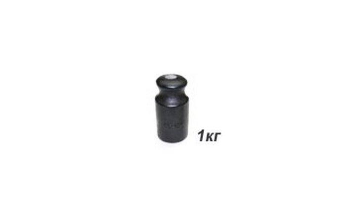 Гири торговые 1 кг OIML R 111-1 чугун