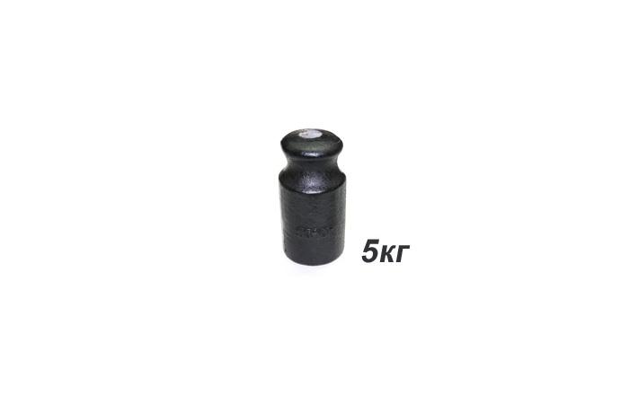 Гири торговые 5 кг OIML R 111-1 чугун
